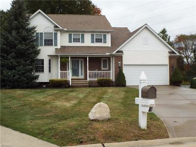 Painesville OH Single Family Home For Sale: $244,900