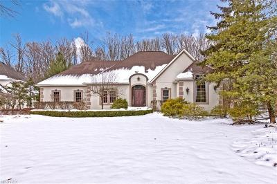 Chagrin Falls Single Family Home For Sale: 95 Edgewood Ct