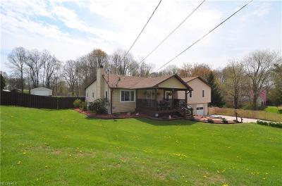 Ravenna Single Family Home For Sale: 5688 State Route 225