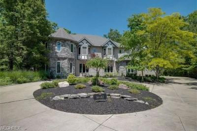 Strongsville Single Family Home For Sale: 14482 Windsor Castle Ln
