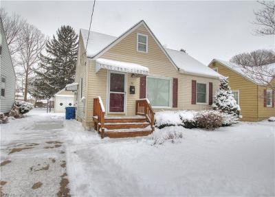Painesville Single Family Home For Sale: 182 Carroll Ave
