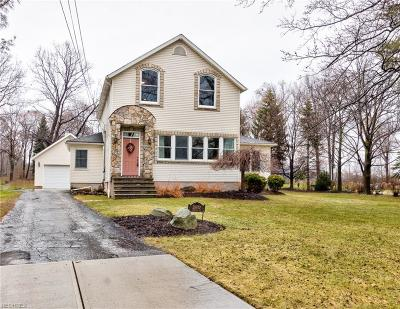 Wickliffe Single Family Home For Sale: 28810 Johnson Dr