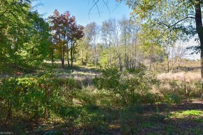 Residential Lots & Land For Sale: 0001 Kent Ave Northeast