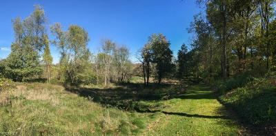 Residential Lots & Land For Sale: 0000 Kent Ave Northeast