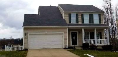 Copley Single Family Home For Sale: 238 Ledgestone Ct