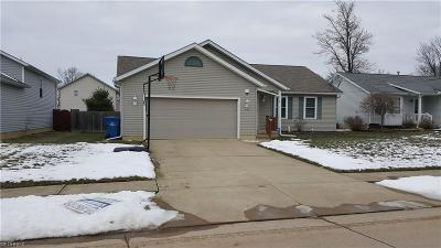North Ridgeville Single Family Home For Sale: 33948 Floraline St