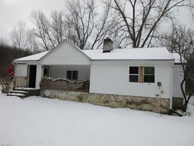 Chagrin Falls Single Family Home For Sale: 7089 Lewis Dr
