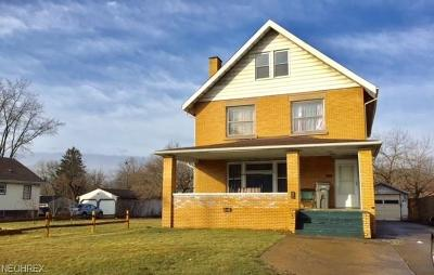 Youngstown Single Family Home For Sale: 4114 Southern Blvd