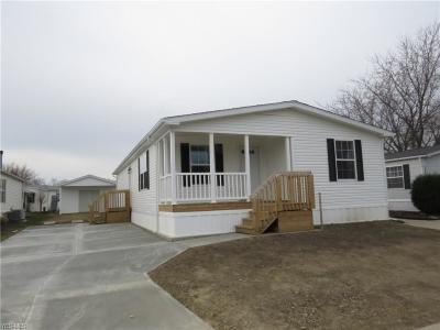 Painesville OH Single Family Home For Sale: $86,000
