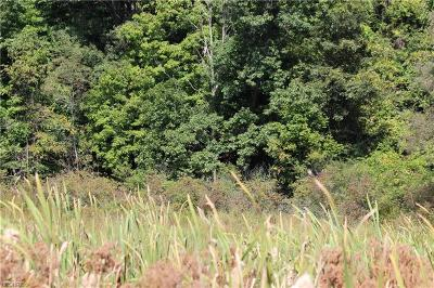 Geauga County Residential Lots & Land For Sale: 9654 Music St