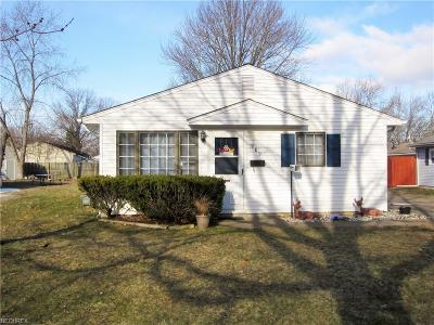 Elyria Single Family Home For Sale: 989 Salem Ave