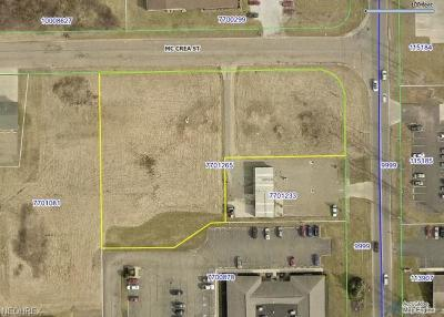 Residential Lots & Land For Sale: Sawburg Ave South