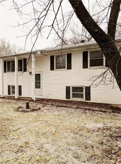 Geauga County Single Family Home For Sale: 8734 Ranch Dr