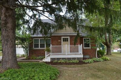 Copley Single Family Home For Sale: 1538 Druid Dr