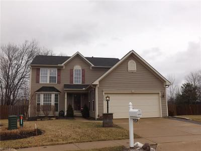 Olmsted Falls Single Family Home For Sale: 8495 Westfield Park Dr