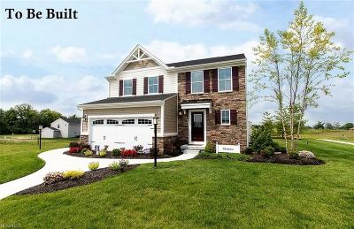 Single Family Home For Sale: 53 Landon St