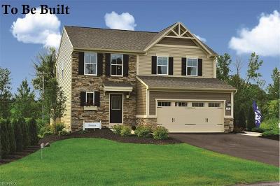 Single Family Home For Sale: 60 Knollridge Ave