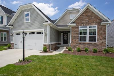 North Ridgeville Single Family Home For Sale: 36170 Waterscape Ct