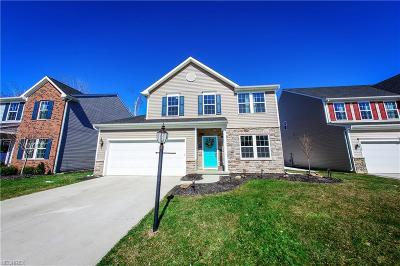 North Ridgeville Single Family Home For Sale: 32032 Burnt Timber Trl