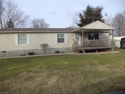 Newton Falls Single Family Home For Sale: 1 Olive St