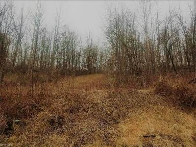 Guernsey County Residential Lots & Land For Sale: 8090 Plainfield Rd