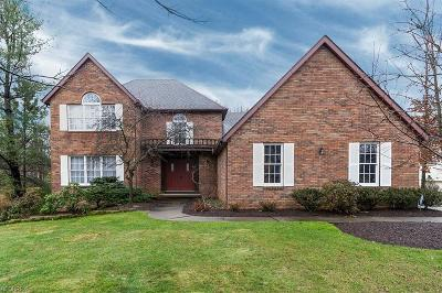 Brecksville, Broadview Heights Single Family Home For Sale: 8420 Timber Trl