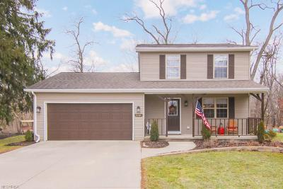 Single Family Home For Sale: 9784 East River Rd North