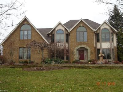 North Royalton Single Family Home For Sale: 6561 Devonshire Dr