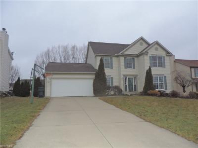 Wadsworth Single Family Home For Sale: 950 Longbrook Dr
