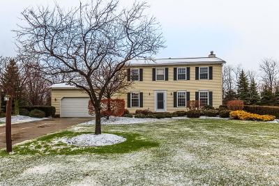 Single Family Home For Sale: 9975 Stone Hollow Rd