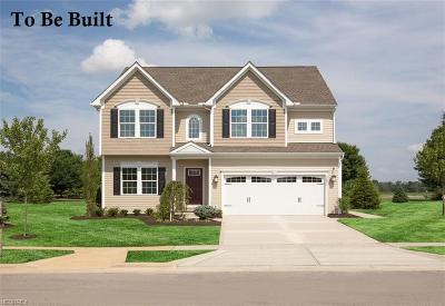 Single Family Home For Sale: 63 Knollridge Ave