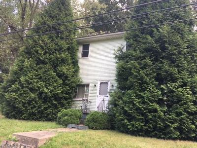 Irondale OH Single Family Home Sold: $10,250