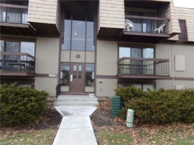 North Royalton Condo/Townhouse For Sale: 9660 Cove Dr #F18