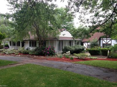 Geauga County Single Family Home For Sale: 17710 Westview Dr