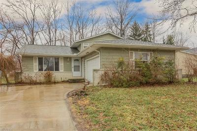 Twinsburg Single Family Home For Sale: 8986 White Oak Dr