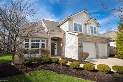Strongsville Single Family Home For Sale: 11682 Greystone Pt