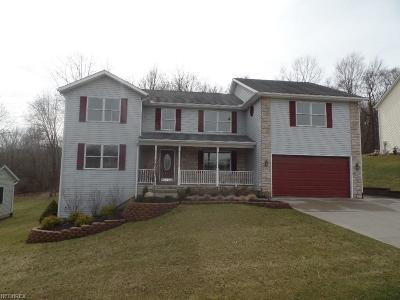 Licking County Single Family Home For Sale: 748 Quarry View Dr