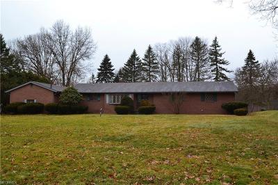 Youngstown Single Family Home For Sale: 2027 Crestwood Blvd