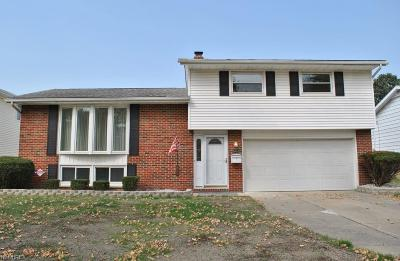 Garfield Heights Single Family Home For Sale: 13891 Grove Dr