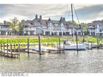 Bratenahl Condo/Townhouse For Sale: 9 Shoreby Dr
