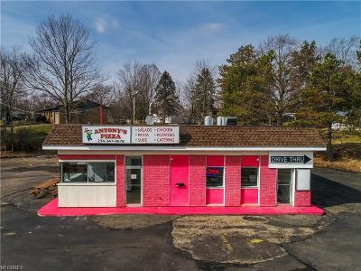 Stark County Commercial For Sale: 5501 Market Ave North