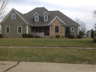 Lake County Single Family Home For Sale: 7562 Manry Ct
