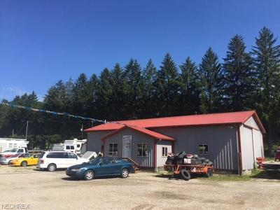 Muskingum County Commercial For Sale: 6760 West Pike Rd