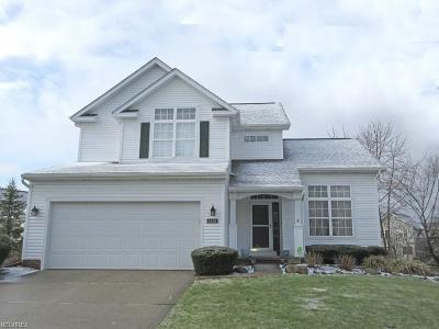 Cuyahoga County Single Family Home For Sale: 1328 Fieldstone Ct