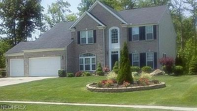 Twinsburg Single Family Home For Sale: 9308 Ashcroft Ln