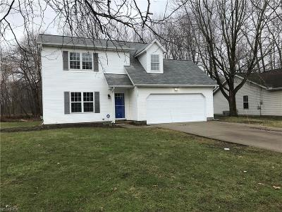 Painesville Single Family Home For Sale: 789 Derby Dr