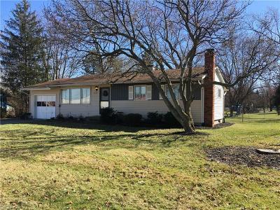 Brunswick Single Family Home For Sale: 4168 Center Rd