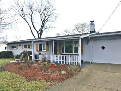 Brunswick Single Family Home For Sale: 4183 Raymond