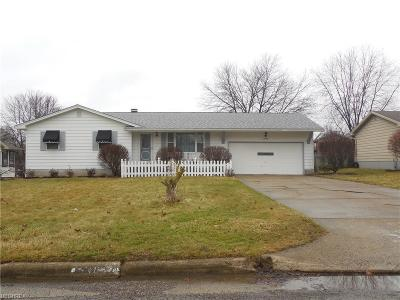 Youngstown Single Family Home For Sale: 7493 Jaguar Dr