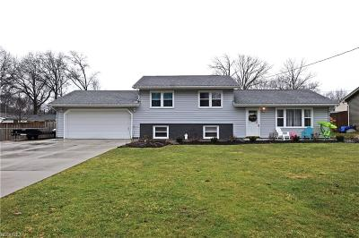 Canfield Single Family Home For Sale: 4511 Alderwood Dr